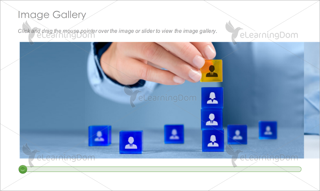 Image Gallery Slider
