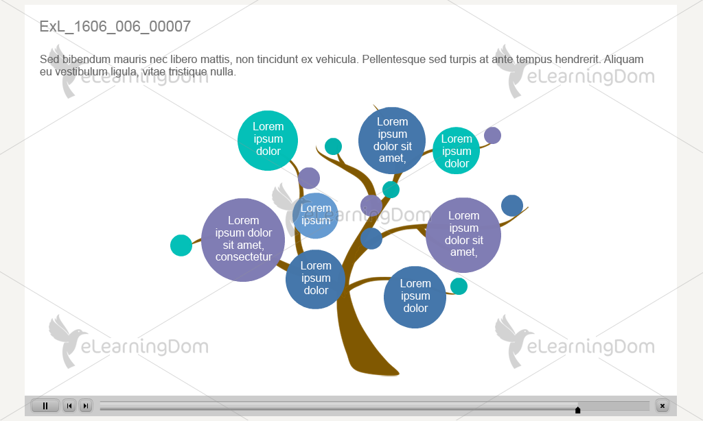 Branching Structure (Adobe Captivate)